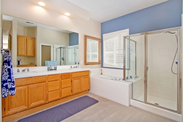master-bath-shadybrook